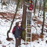 Naturschutzpreis für Stamm Turmfalke (BPS) aus Neu-Anspach
