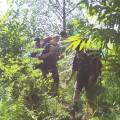 Scouting 4 08 PbW Wilde Gesellen Lago Maggiore 9