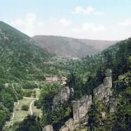 Gefährliche Waldwege im Harz