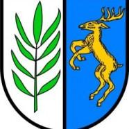 """Moonrise Kingdom"" im Schwarzwald"