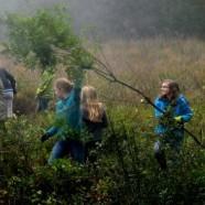Pflegeeinsatz im Naturschutzgebiet