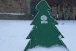 Weihnachtsbäume für Ruanda