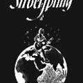 Silberspring7