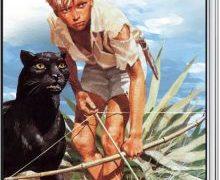 Buchvorstellung: Tiger und Panther