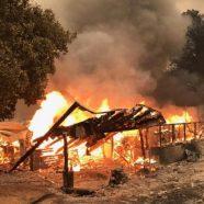 Kalifornien: 90 Pfadfinder vor Waldbrand gerettet