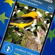 App für Vogelstimmen